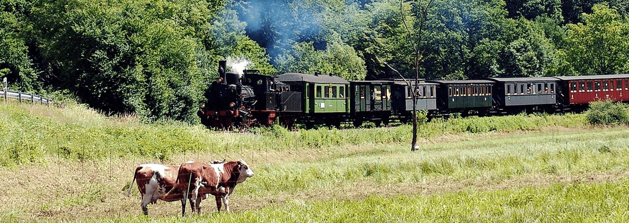 Titelbild Schädler-Kuckucksbahn